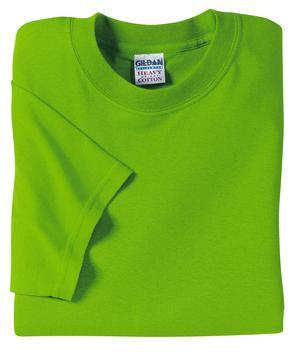 Gildan 5000 T shirt